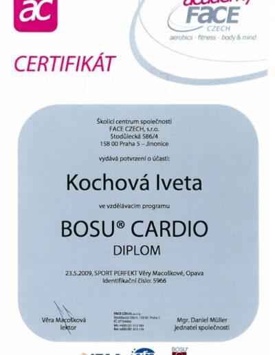 bosu-cardio